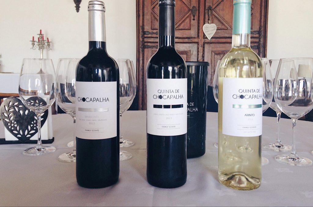 Chocapalha wine tasting experience with Alice